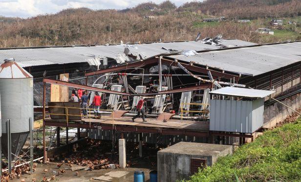 hurricane damaged business