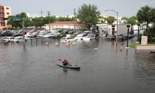 FEMA had earlier advised insurance companies that offer federal flood insurance policies to suspend sales and renewals under the program.