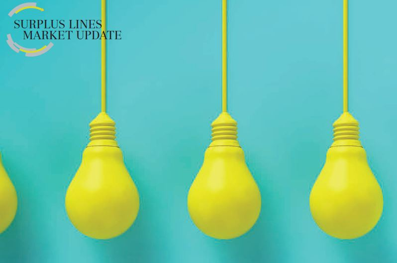The E&S insurance sector continues to innovate and thrive