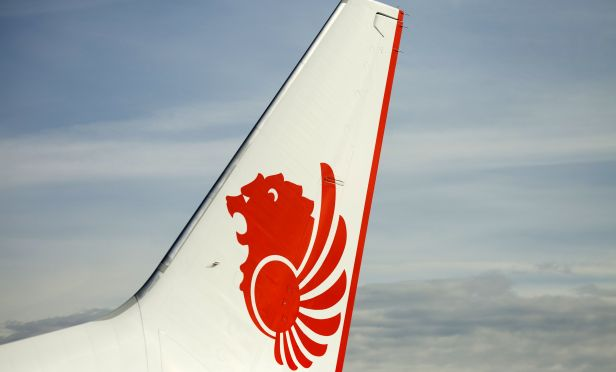 Lion air logo on jet tail.