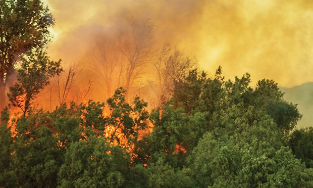 Mitigating wildfire risks.
