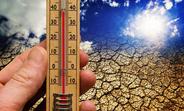 Rising global temperatures.