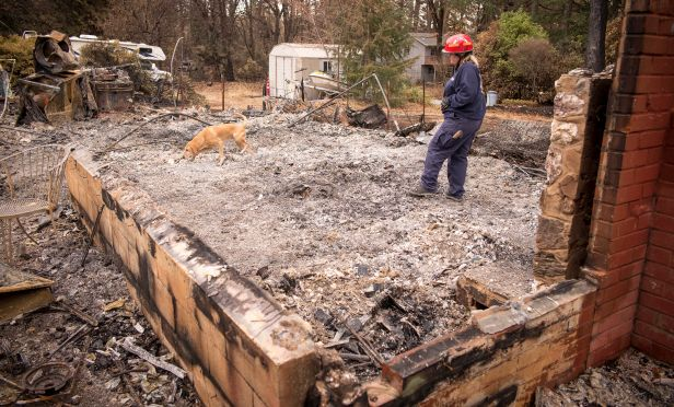 Remains of home burned by wildfire.