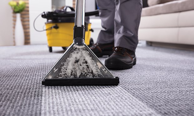 Cleaning moldy carpet.