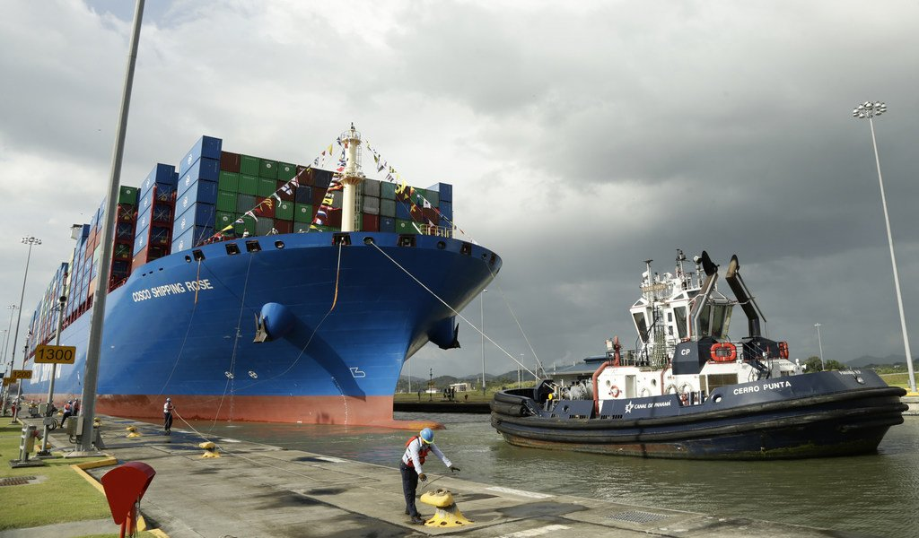 Allianz: Global shipping losses down but new risks emerge