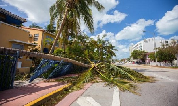 City of Miami Beach, Florida, after Hurricane Irma. (Photo: Mia2you/Shutterstock)