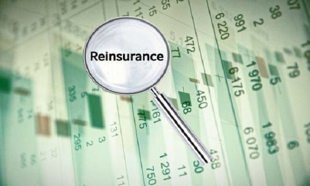 A reinsurer is a company that provides financial protection to insurance companies, says Investopedia. (Photo: Shutterstock)