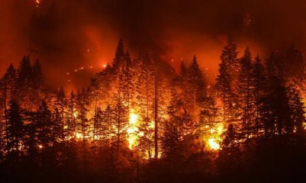 Eagle Creek Wildfire in Columbia River Gorge, Ore. (Photo: Shutterstock)