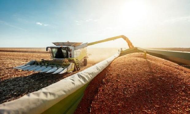 A combine harvesting corn. (Photo: Shutterstock)