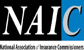NAIC opens comments for upcoming race and inclusion panel