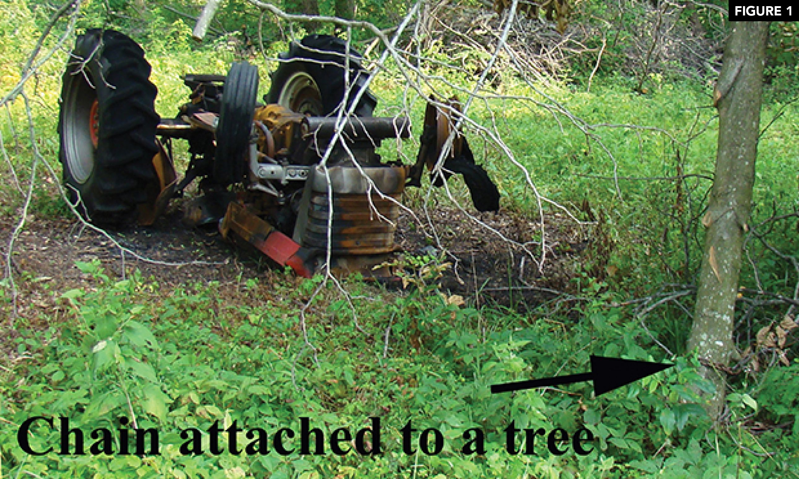Chain from tractor to tree.