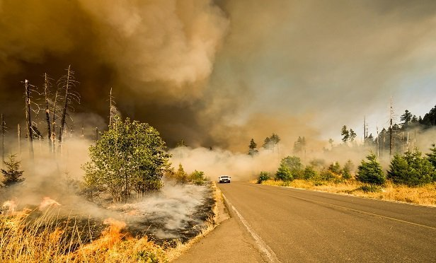 Wildfire on Big Fall Creek Road in Oregon.