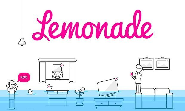 """""""Lemonade Car will use technology to handle emergencies and pay claims quickly, offer good prices to safe drivers and will be especially attractive to drivers of electric vehicles and eco-friendly cars."""