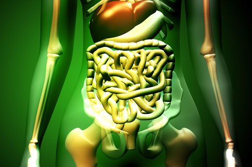 diseases of digestive system. #9: Digestive System Diseases