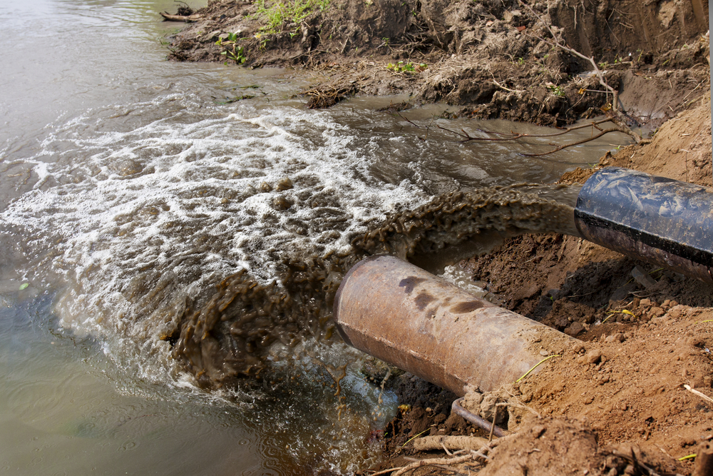 Polluted water coming out of pipes into stream
