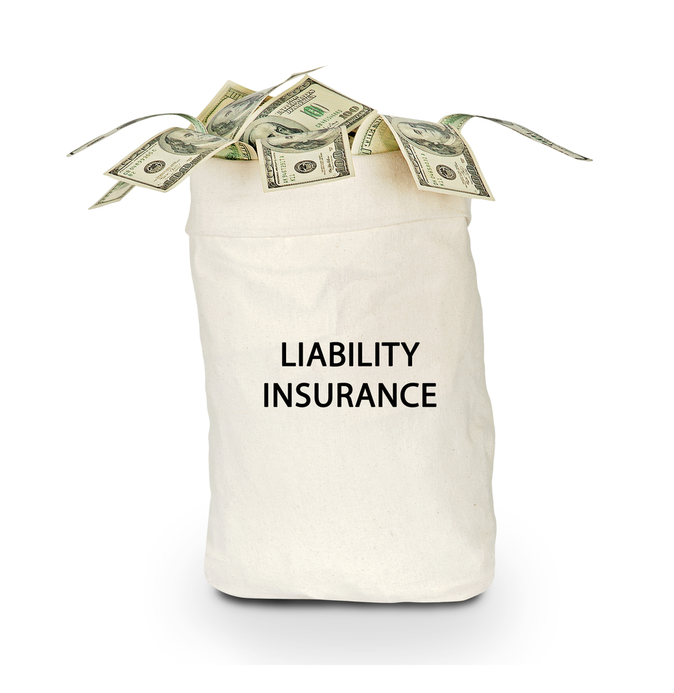 Bag-labeled-liability-insurance-with-US-currency-spilling-out-SS-arka38