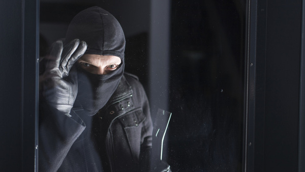An empty home is more vulnerable to theft. The good news is, home theft is preventable. (Twin Designs/Shutterstock.com)