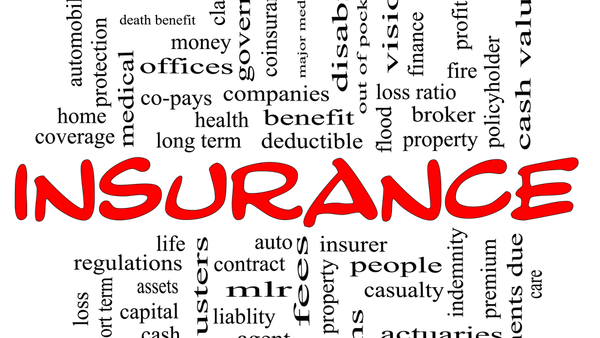Insurance-wordle-crop-shutterstock