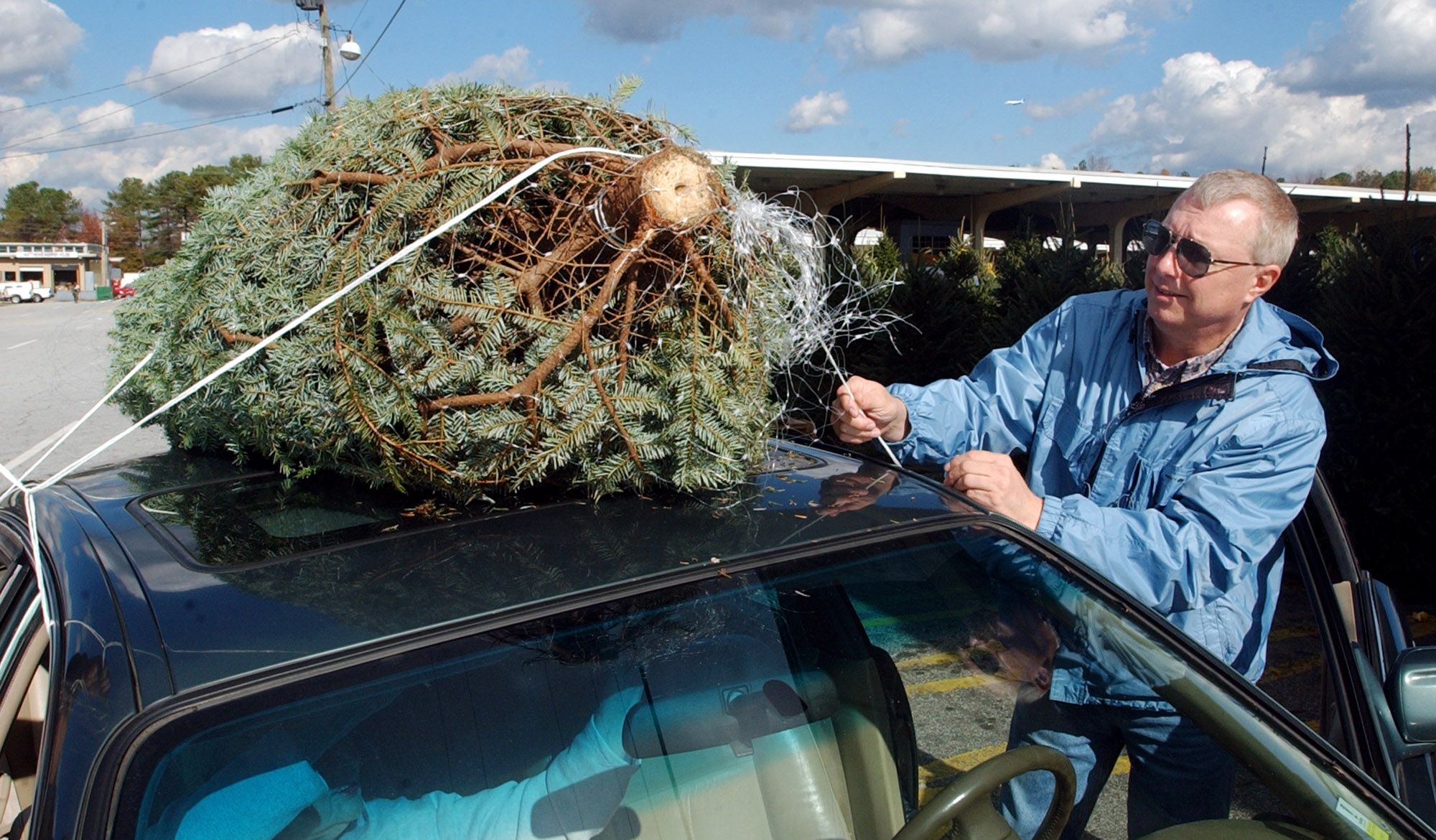 9 Tips To Get Your Christmas Tree Home Safely Without Damaging  - Christmas Tree On Car