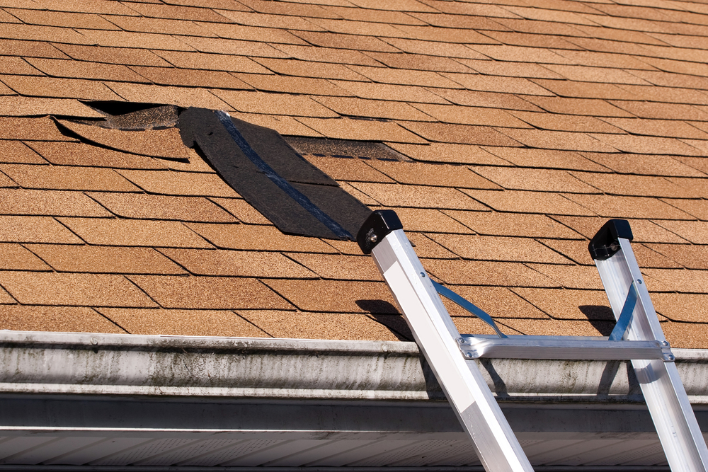 Roof-missing-shingles-shutterstock49112053---wind-damage-arena-creative