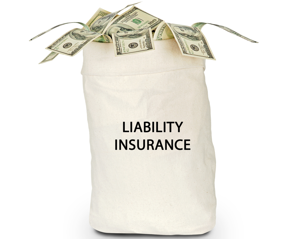 Bag-labeled-liability-insurance-with-US-currency-spilling-out-crop-SS-arka38