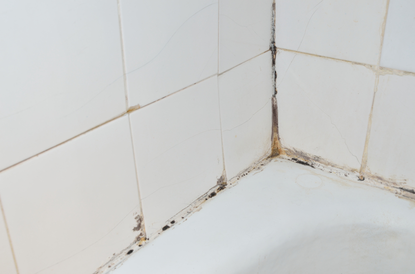 Is Your Bathroom At Risk For Water Damage Mogil Organization - Leak in bathroom floor