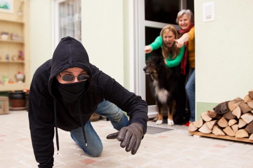 Burglar fleeing home