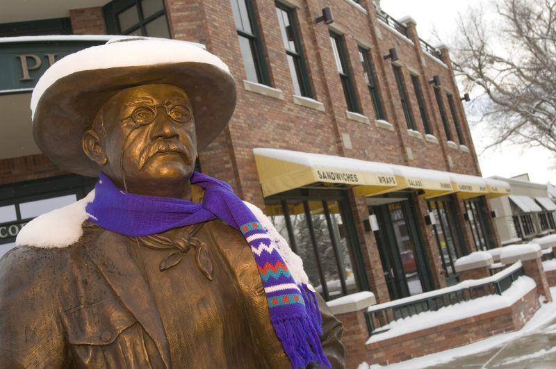 Longmont, Colorado statute