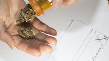 Seeing marijuana through the haze of myths
