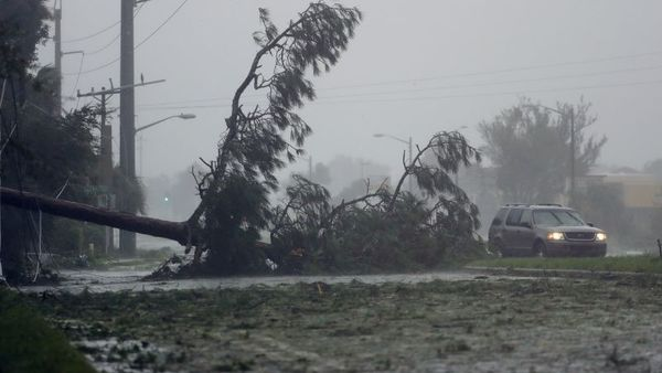 A car drives past a downed tree as Hurricane Matthew moves through Daytona Beach, Fla. Friday, Oct. 7, 2016. Matthew was downgraded to a Category 3 hurricane overnight, and its storm center hung just offshore as it moved up the Florida coastline, sparing communities its full 120 mph winds. (AP Photo/Charlie Riedel)