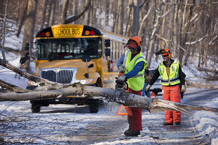 Men clearing downed tree in road in front of school bus