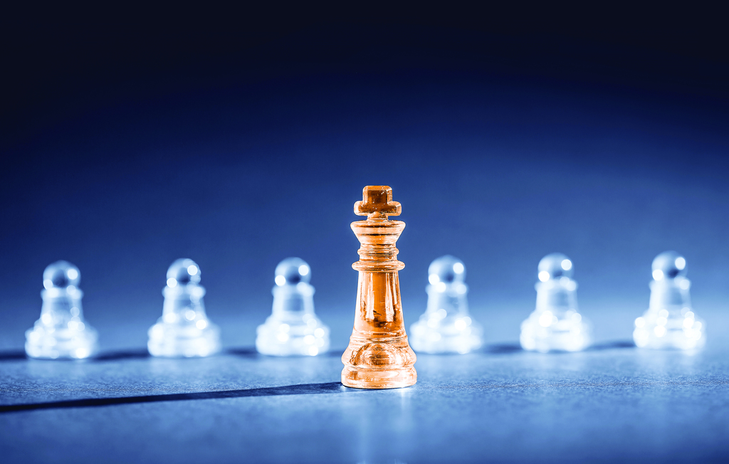 A king leads the board in chess