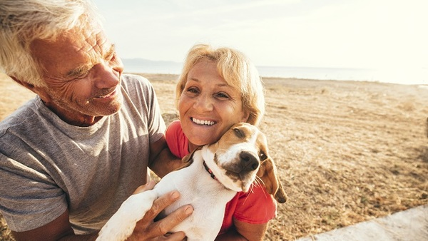 The new mobile app from Crum & Forster Pet Insurance Group can be accessed online at www.ASPCAPetInsurance.com. Roughly 85 million American households own at least one pet, according to the Insurance Information Institute and the American Pet Products Association. (Photo: iStock)