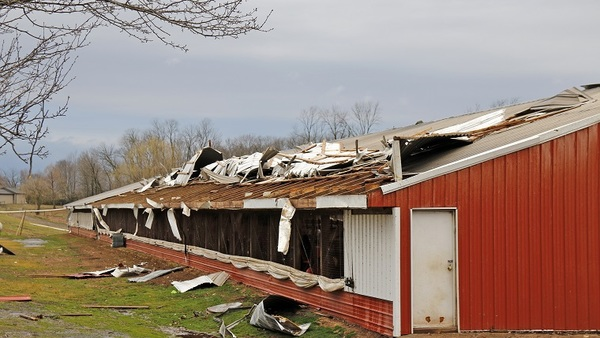 Specific circumstances will determine the extent of coverage after a loss caused by wind, water or mold. Here, severe winds in Lancaster County, Penn., earlier this year ripped the roof from this horse stable as well as several other agricultural buildings. (AP Photo/Kirk Neidermyer)