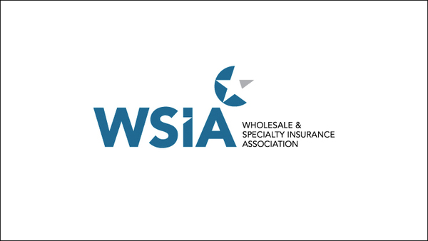 Created by the merger of NAPSLO and AAMGA, the Wholesale and Specialty Insurance Association came into official existence on Aug. 1, 2017.