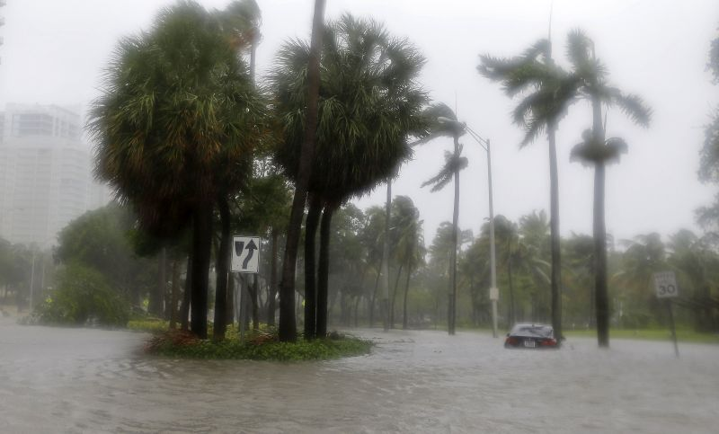 Heavy rains flood the streets in the Coconut Grove area in Miami