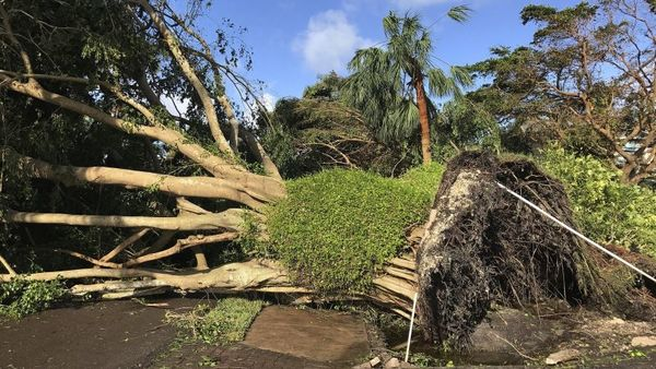 Debris lines a street in Naples, Fla., in the aftermath of Hurricane Irma, Monday, Sept. 11, 2017. Florida Gov. Rick Scott said there's damage across the state caused by Hurricane Irma and it's still too dangerous for residents to go outside or return from evacuation. (AP Photo/Robert Ray)
