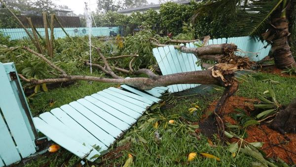 Florida is the only state with calendar year deductibles, which are applicable to all losses that occur in one calendar year. Here, a sprinkler spews out water after a tree came down on a fence in Surfside, Fla., during Hurricane Irma on Sunday, Sept. 10, 2017. (AP Photo/Wilfredo Lee)