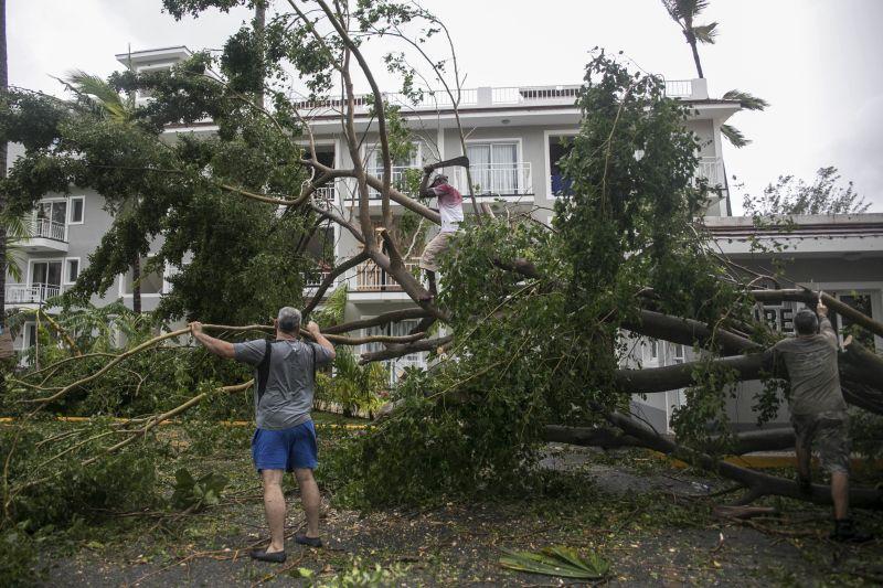 Men cut a fallen tree after the crossing of Hurricane Maria over Bavaro, Dominican Republic