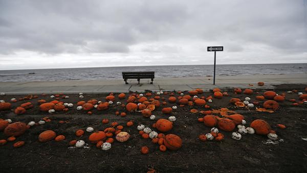 Pumpkins scattered across the beach