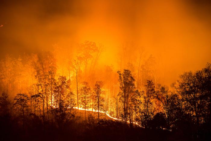 wildfire equipment