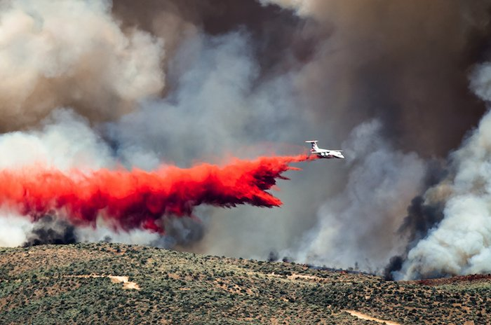 attempting to put out a wildfire