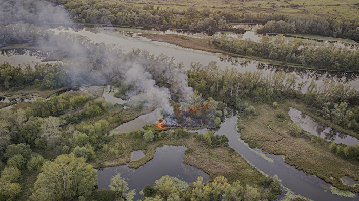 wildfire burns through woods
