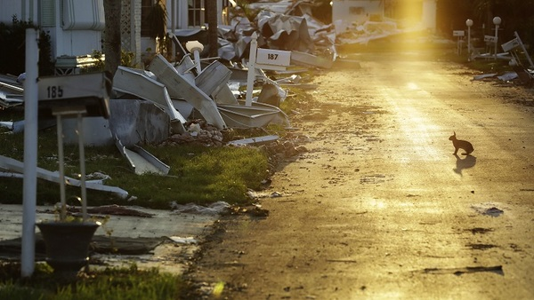 Claims experts suggest that policyholders call their insurance company or agent just as soon as they see that damage has occurred. (Photo: AP Images)