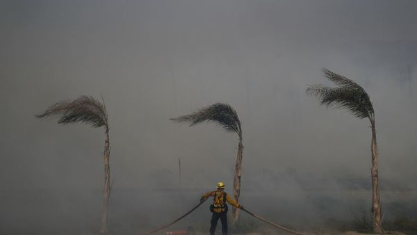 Palm trees sway in a gust of wind as a firefighter carries a water hose while battling a wildfire at Faria State Beach in Ventura, Calif., Thursday, Dec. 7, 2017. (AP Photo/Jae C. Hong)